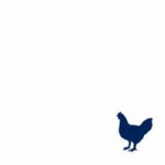 Poultry Feed Supplements - Poultry Feed Additives Manufacturer - Explore our Innovative products for Broiler, layer and breeder